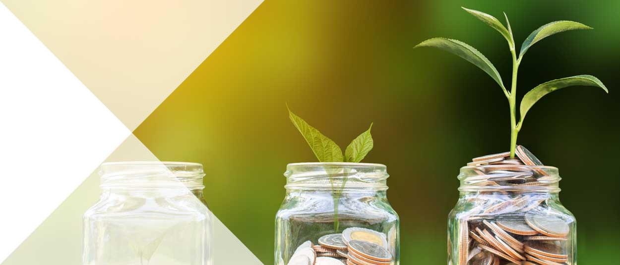 Individual Savings Accounts (ISAs)