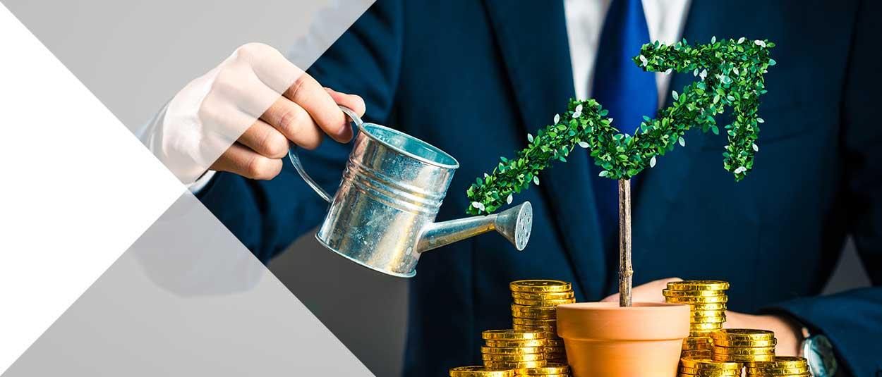 Trusts & Bonds Advice from Pembroke Financial IFA's